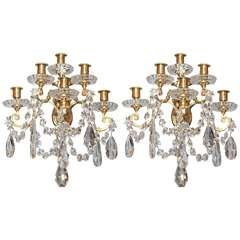 Pair Antique Baccarat and Ormolu 5 Light Sconces circa 1890-1910