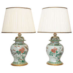 Pair of 19th Century Chinese Ginger Jar Lamps, with Painted Birds and Flowers
