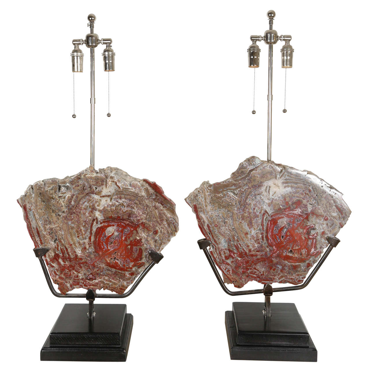Spectacular Pair of Petrified Wood Lamps