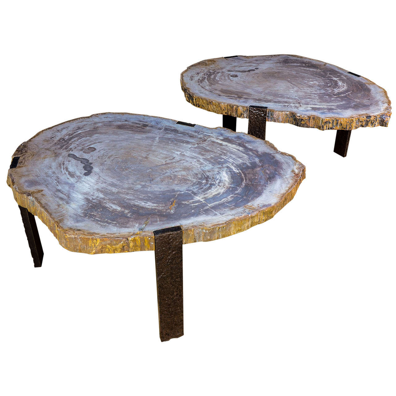 Pair Of Oval Coffee Tables With Petrified Wood Top And Tripod Base