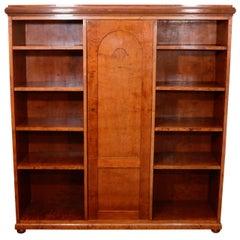 Neoclassical Mahogany, Birch and Ash Biedermeier Bookcase