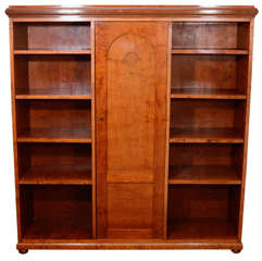 Neoclassical Mahogany, Birch and Ash Biedermeier Bookcase