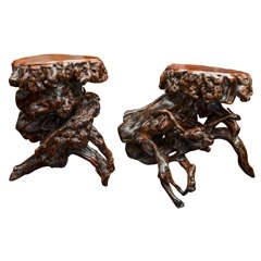 Turn of the Century Qing Dynasty Southern Elm Root Stool