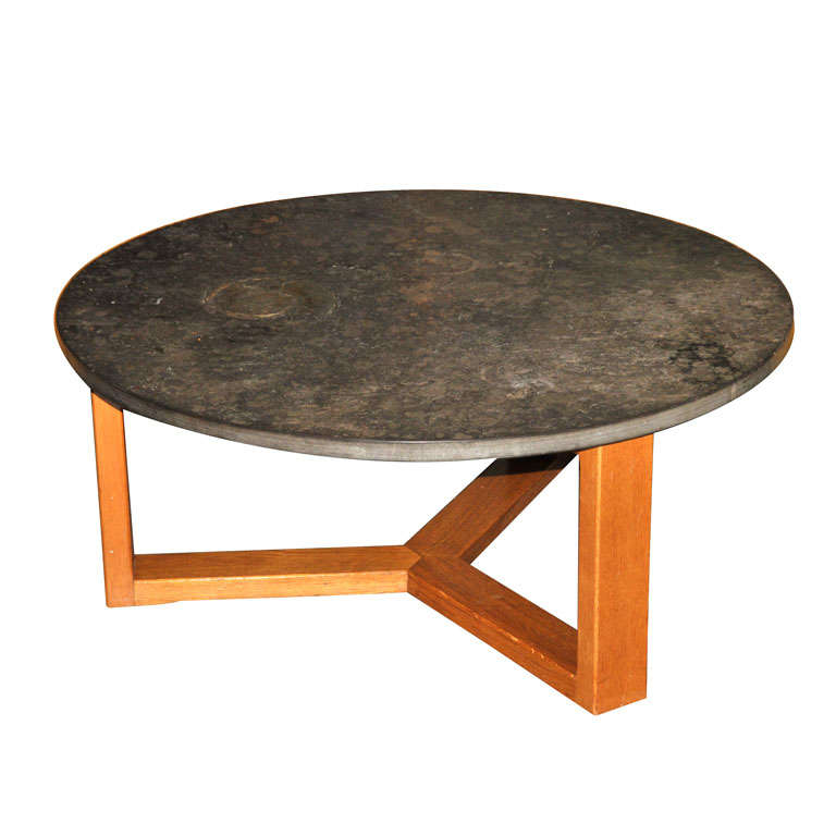 Important brazilian limestone coffee table with fossils for Fossil coffee table