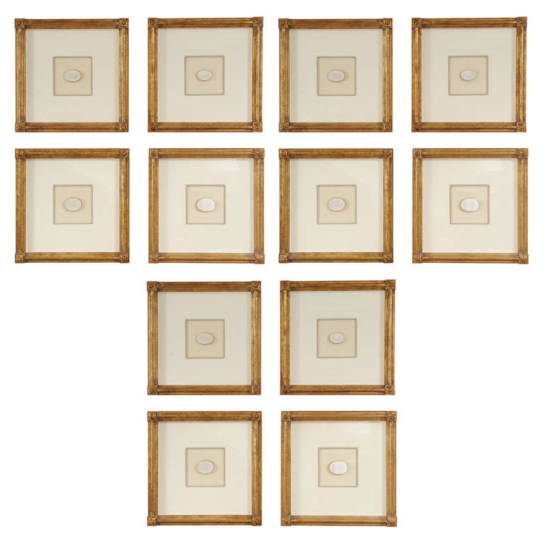 a collection of 12 giltwood musuem quality framed intaglios 1