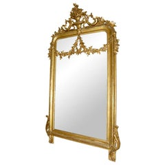 A large 19th century French Neoclassical giltwood wall mirror