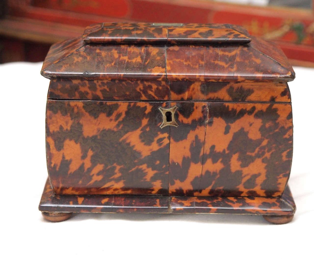 English Regency Single Compartment bulbous form tea caddy.