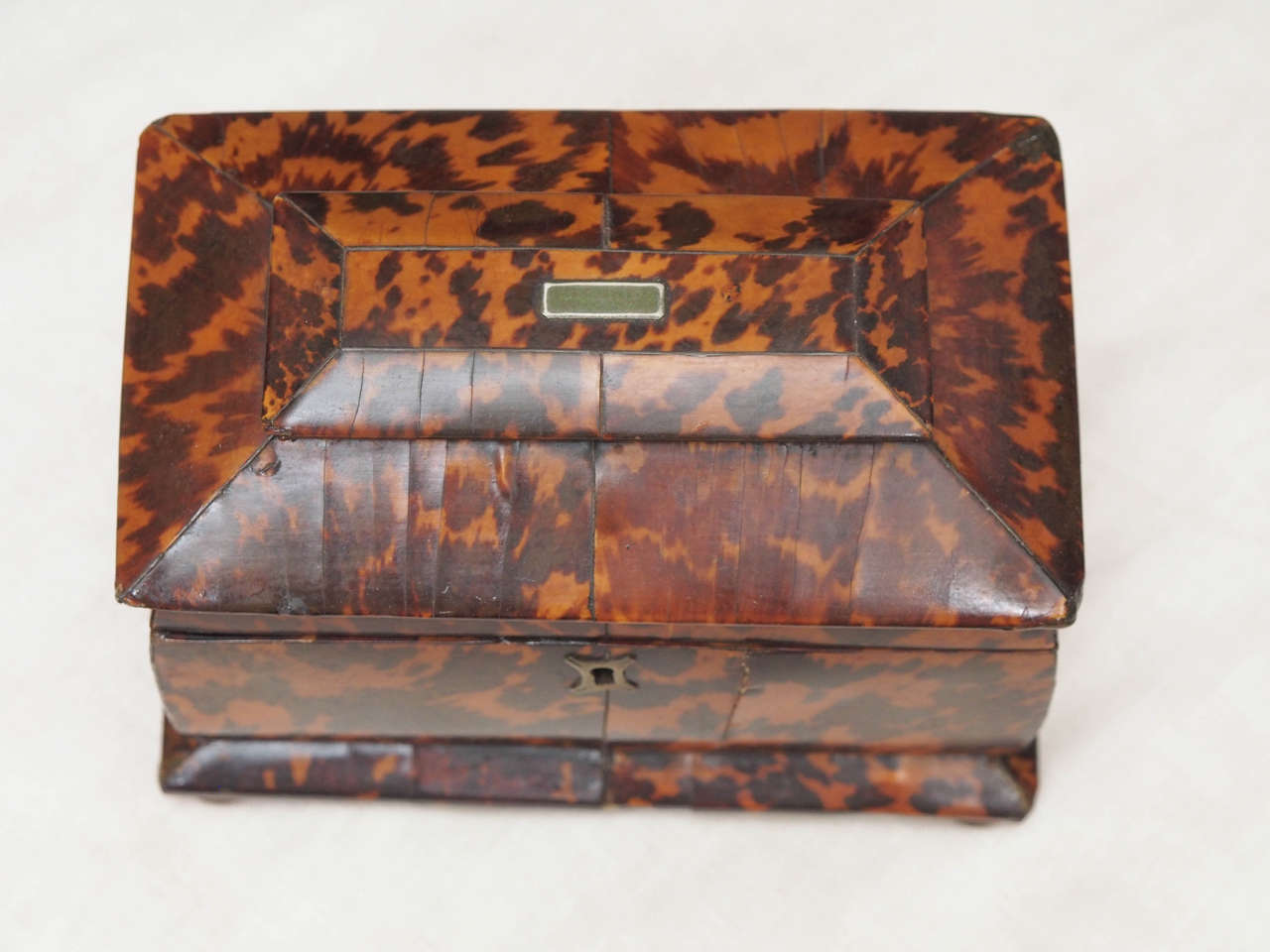 English Regency Tortoishell Tea Caddy In Good Condition For Sale In New Orleans, LA