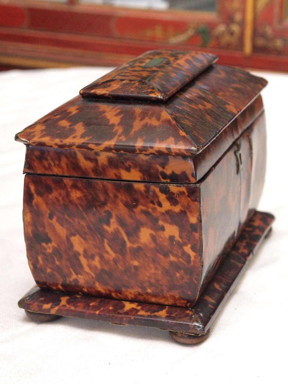 English Regency Tortoishell Tea Caddy For Sale 2