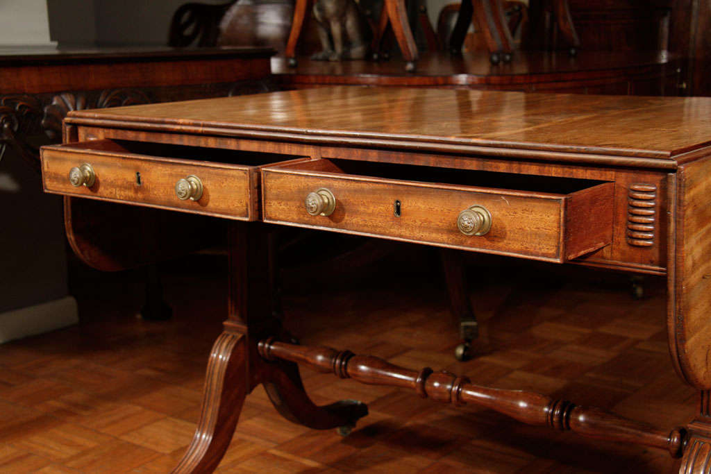 19th Century Regency Cork Sofa Table For Sale