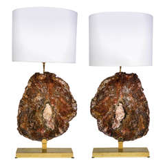 Stunning Pair of Bronze and Petrified Wood Lamps
