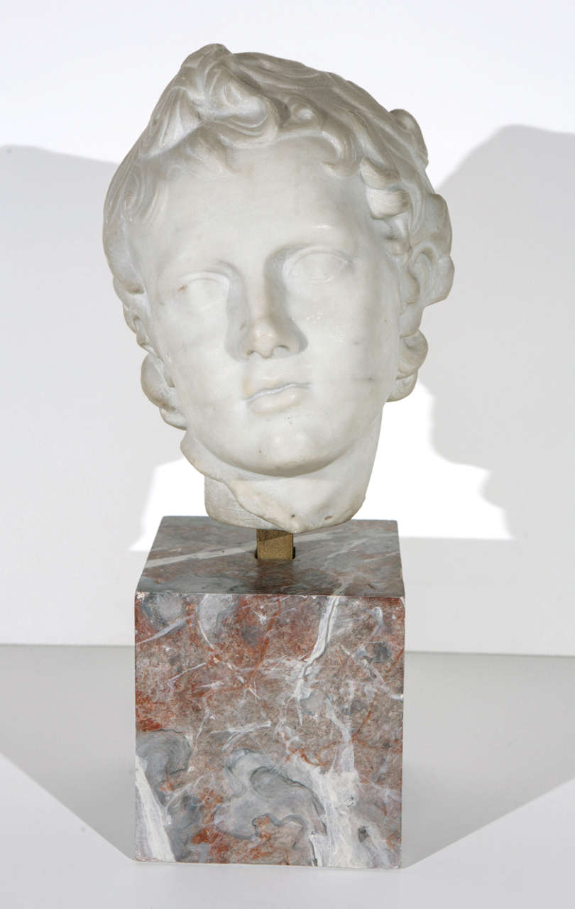 Classical Roman 19th Century Marble Bust For Sale