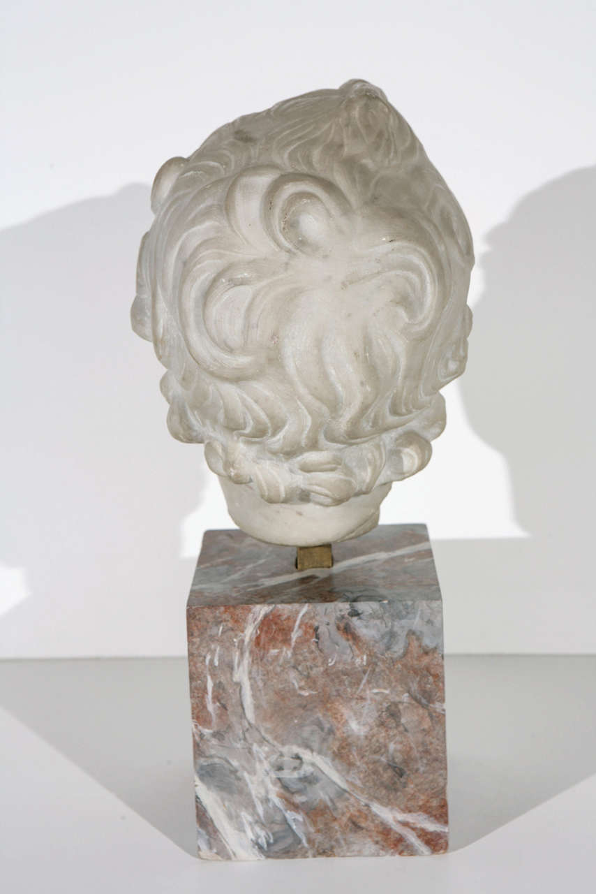 19th Century Marble Bust For Sale 2