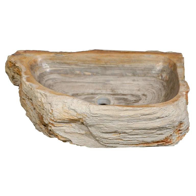 A Petrified Wood Basin at 1stdibs