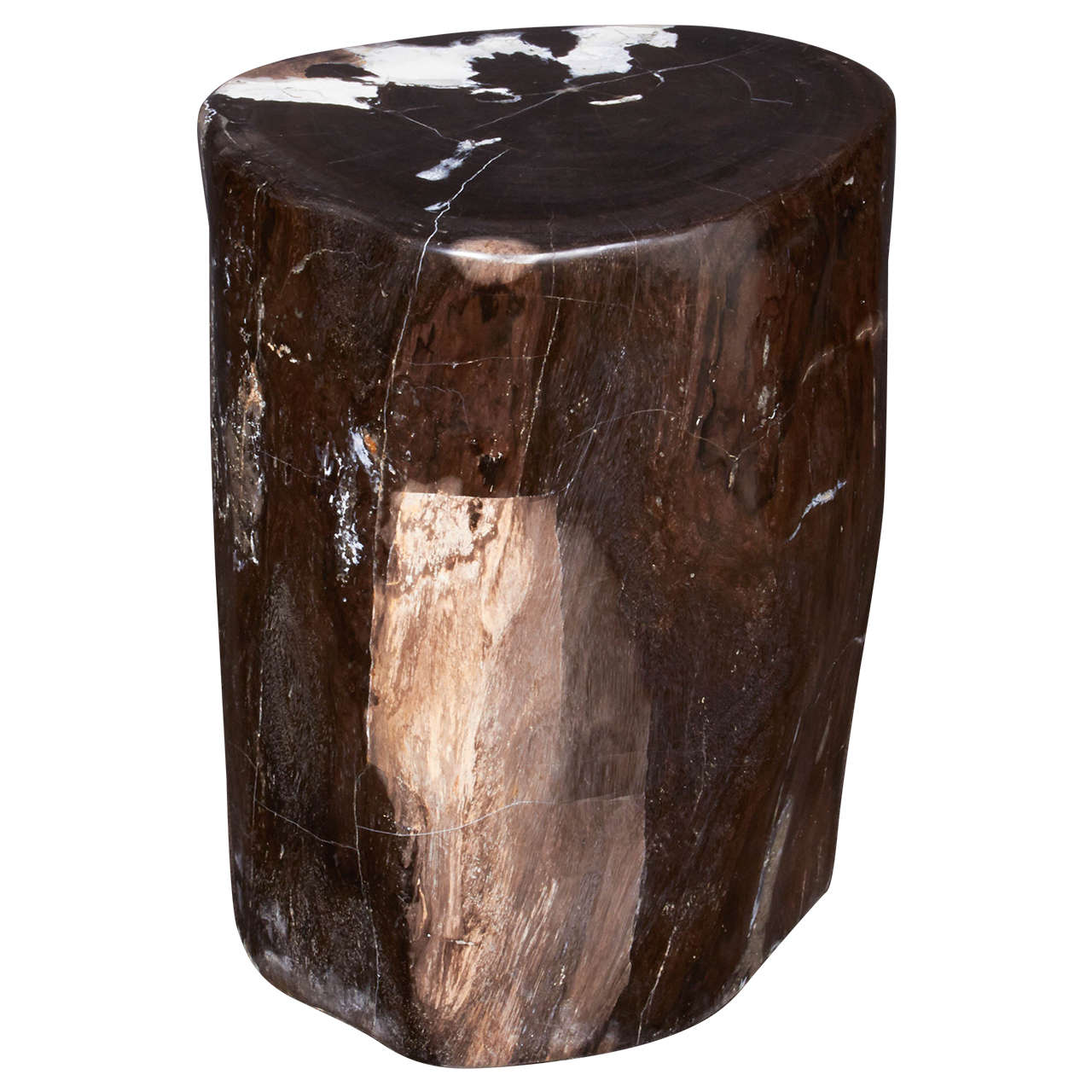 Superb Outstanding Petrified Wood Side Table In Hues Of Black Onyx 1