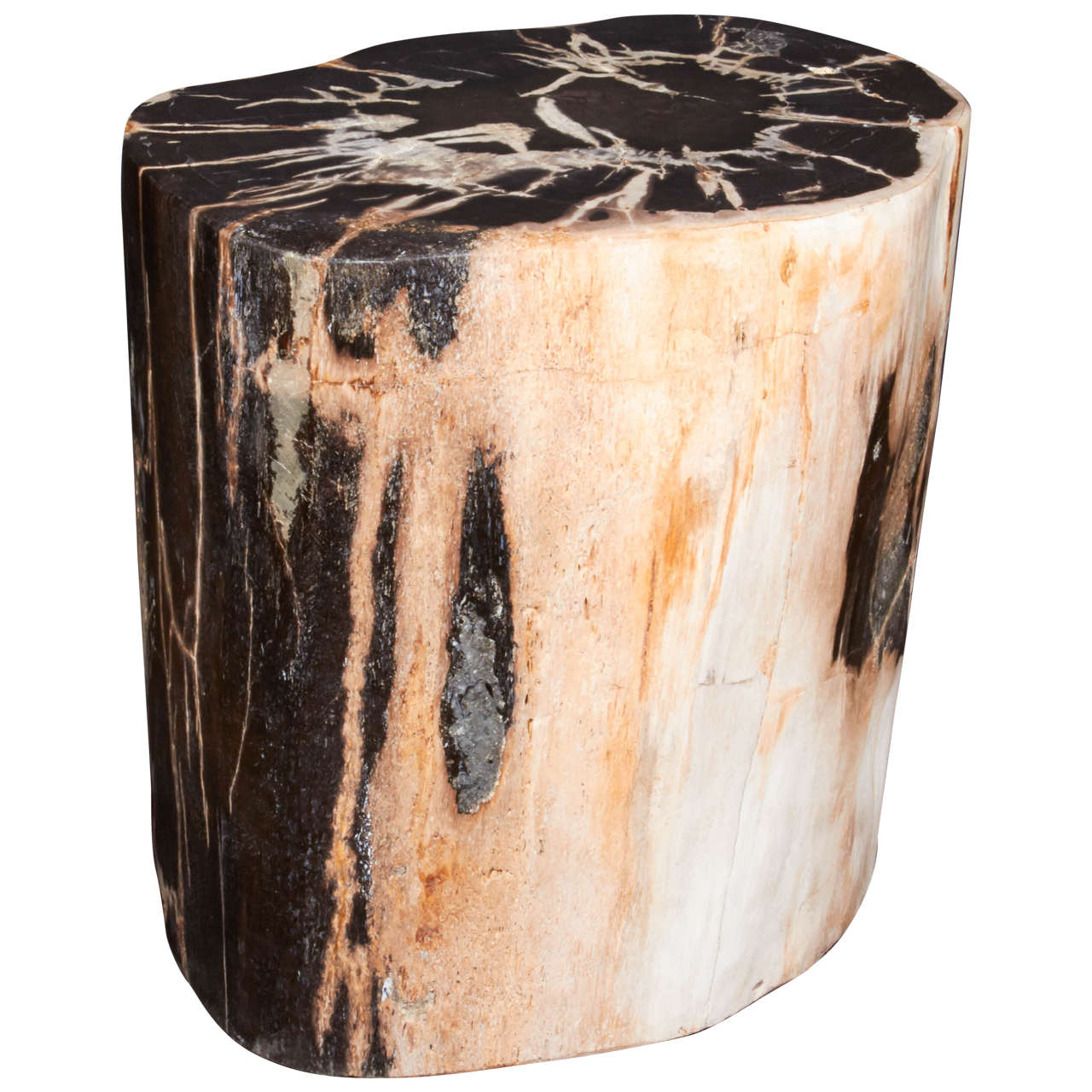 Exquisite Petrified Wood Side Table With Natural Striped Top 1