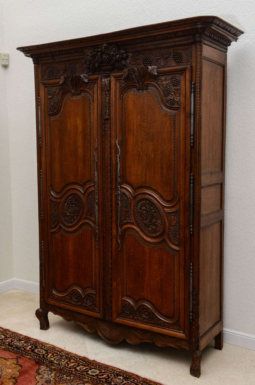 French Two Door Armoire 19th Century At 1stdibs