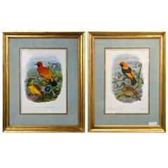 Fine Pair of Wonderfully Framed Lithographs
