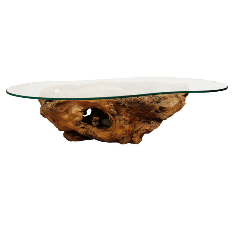 "Root Coffee Table For Sale: Mid Century ""Root"" Base Glass Top Coffee Table At 1stdibs"