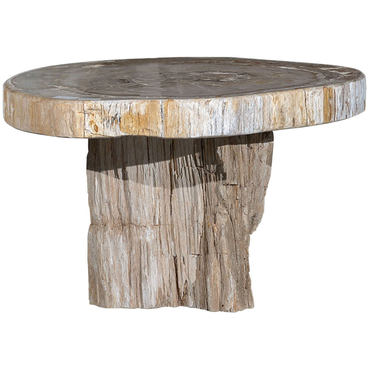 A Petrified Wood Coffee Table At 1stdibs
