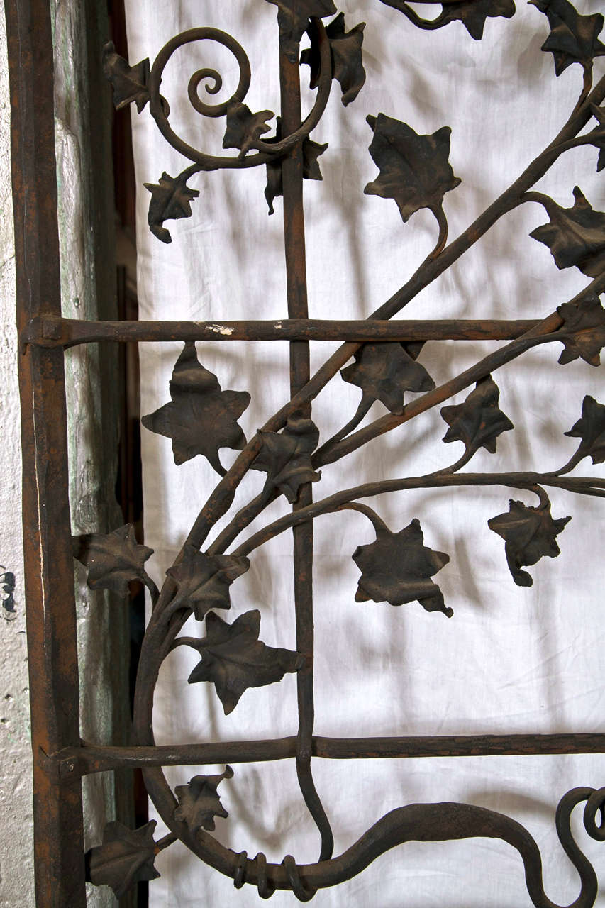 Mid-20th Century Antique Wrought iron Gates and Panels-Acorn Pattern For Sale