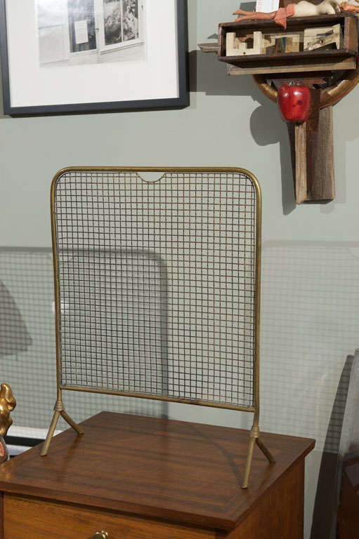 Small simple brass fire place screen.