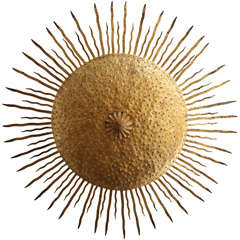 Sun Ceiling Sconce
