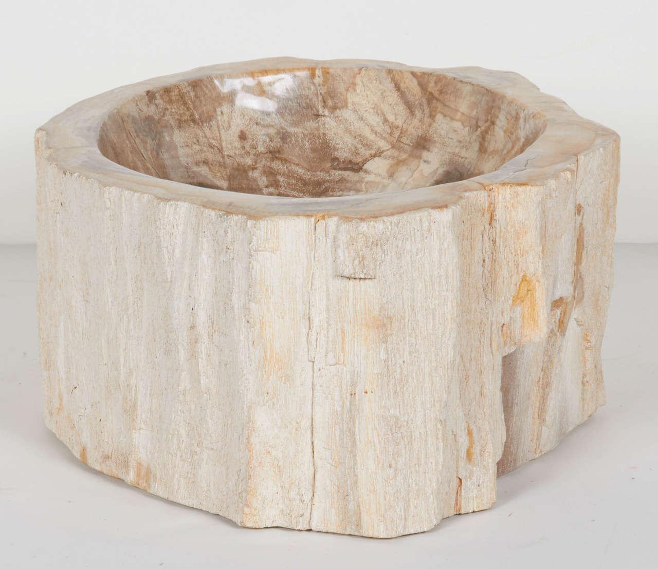 Rare Organic Petrified Wood Large Bowl or Sink at 1stdibs