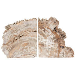 Pair of Remarkable Petrified Wood Bookends with Natural Jagged Edges