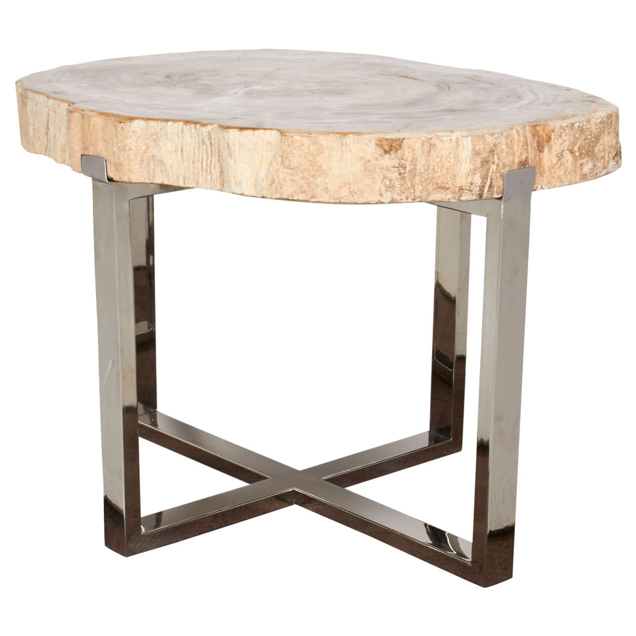 Petrified Wood Slab Coffee Table Or Side Table At 1stdibs