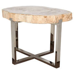 Petrified Wood Slab Coffee Table or Side Table