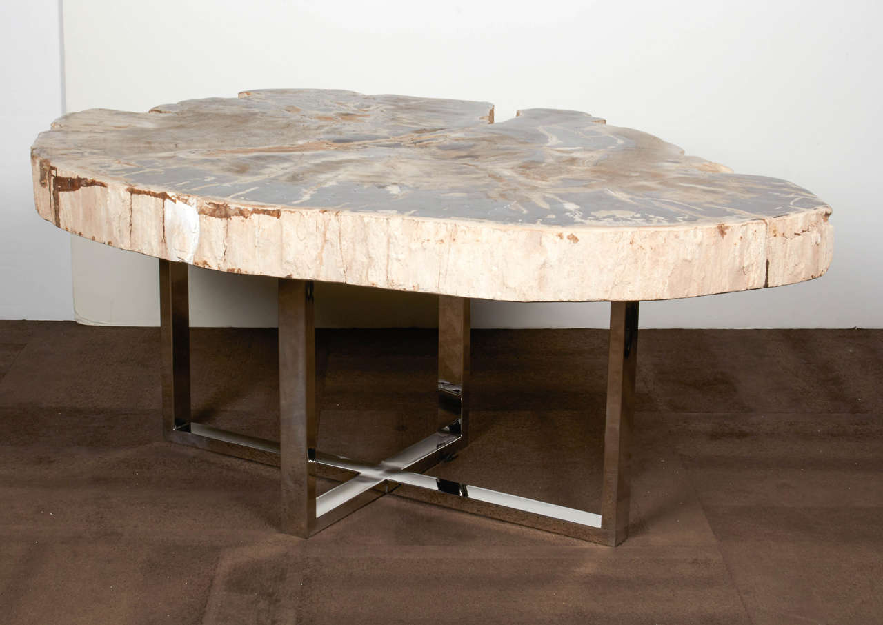 Exquisite Large Scale Coffee Table Comprised Of A Solid Slab Petrified Wood Naturally