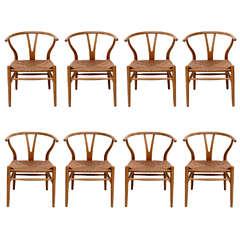 Set of 8 Hans Wegner Wishbone Chairs