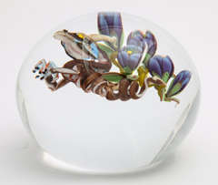 Jim D'Onofrio Dragon Root Paperweight image 9