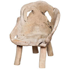 Elm Root Chair