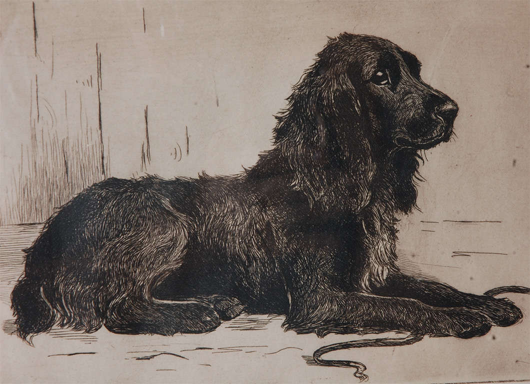 Signed 19thc pen and ink of a dog signed marion harrier at 1stdibs