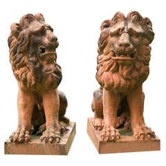 Sculptures of Lions in Terra Cotta