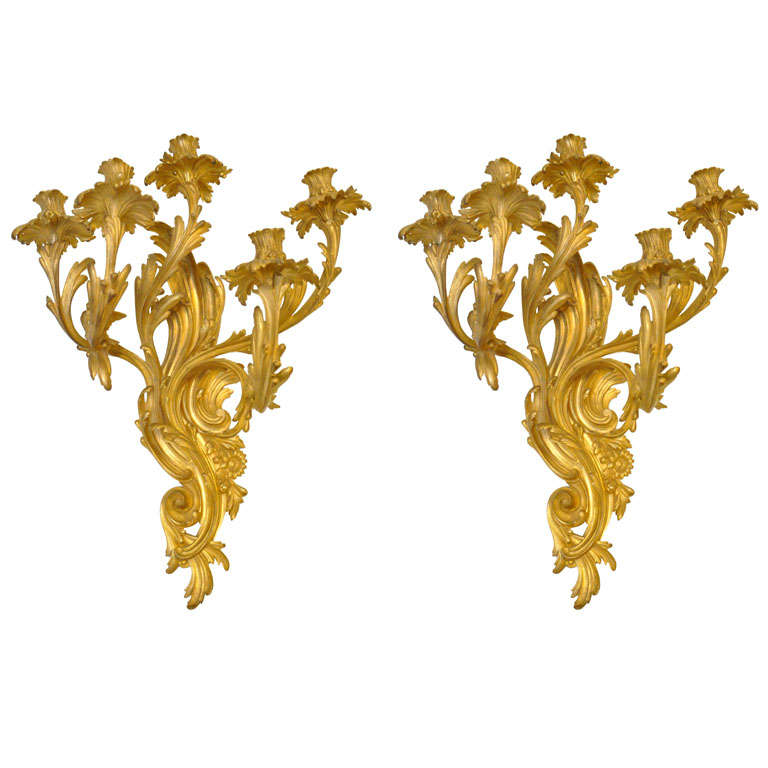Pair of 19th Century French Rococo Gilt Bronze Candle Sconces