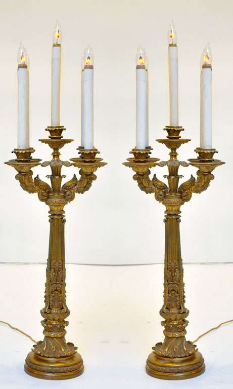 An important elaborate pair of extra-large Neoclassical bronze 5-Light candelabra lamps converted to electric. Classical Roman fluted column shaft surmounted by a detailed gilt bronze bobache sprouting flower bud capital surrounded by four gilt