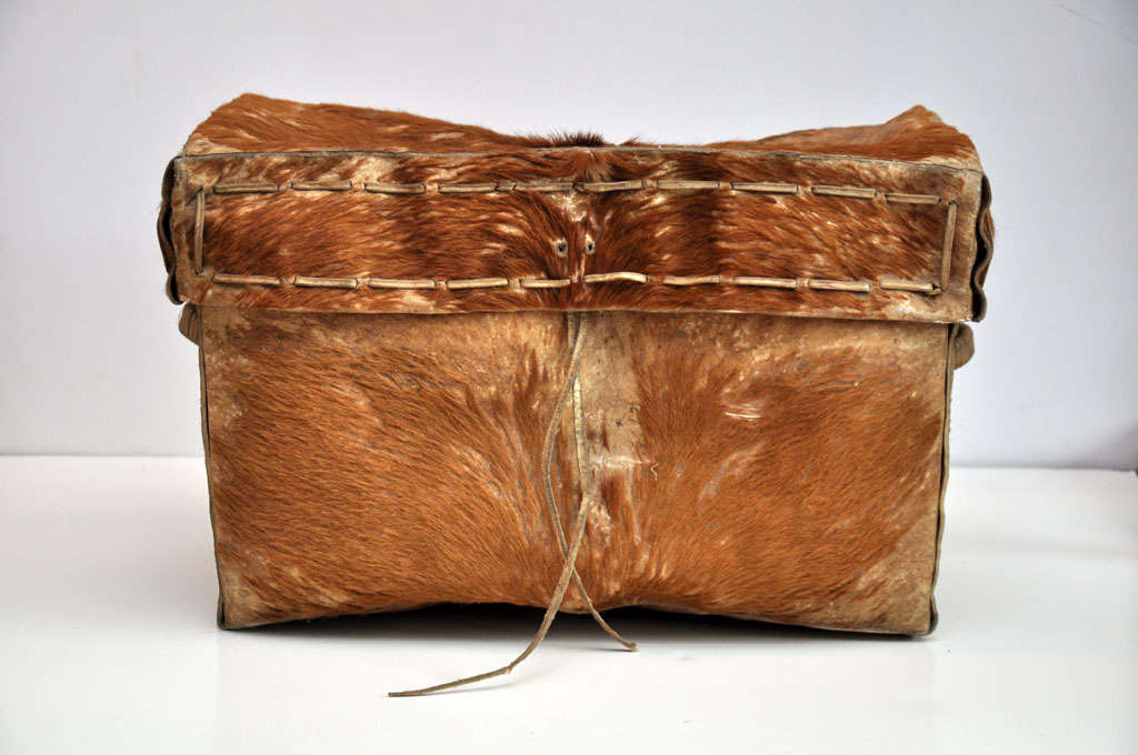 Hair On Hide Trunk From Argentina S Frontier Region At 1stdibs