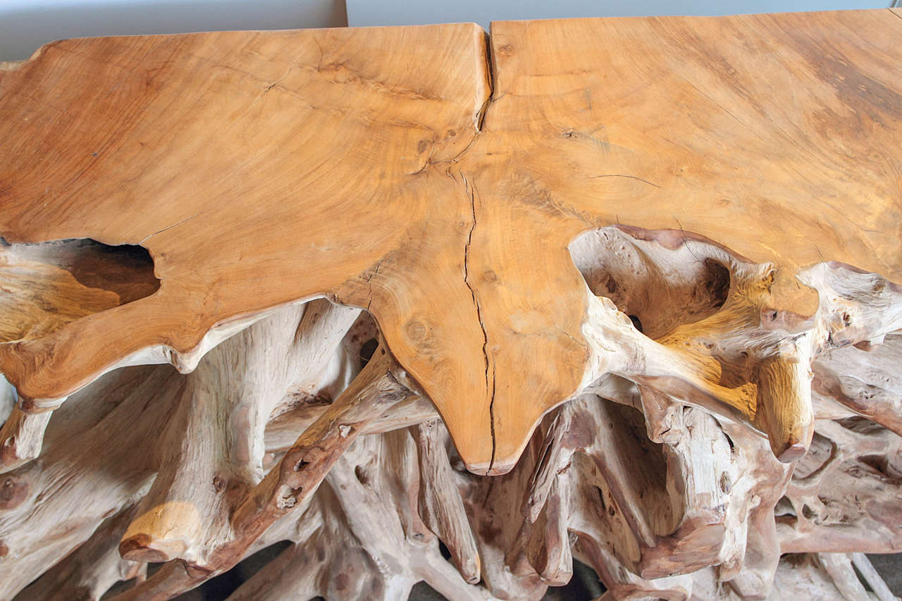 Teak Root Console Table 2