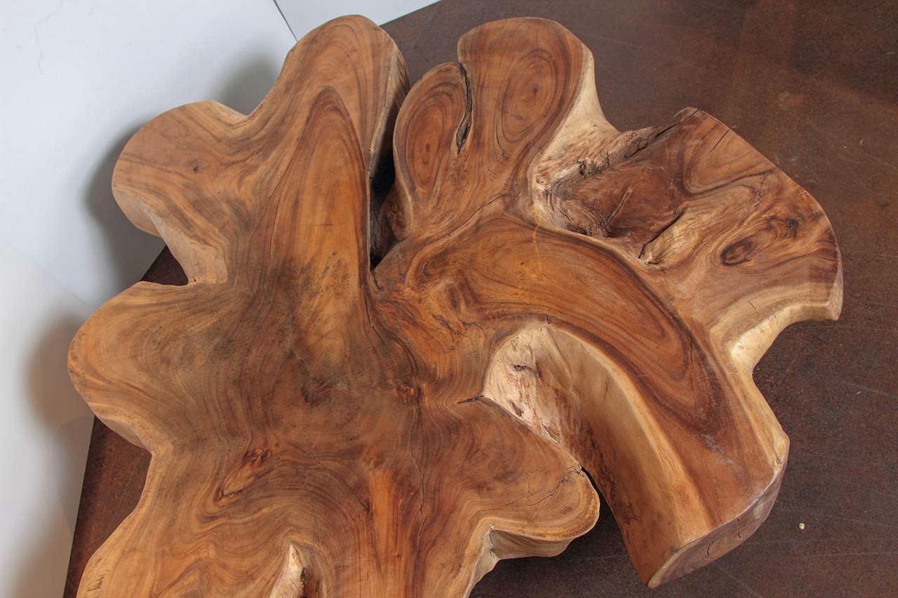 Organic Form Lychee Wood Coffee Table At 1stdibs