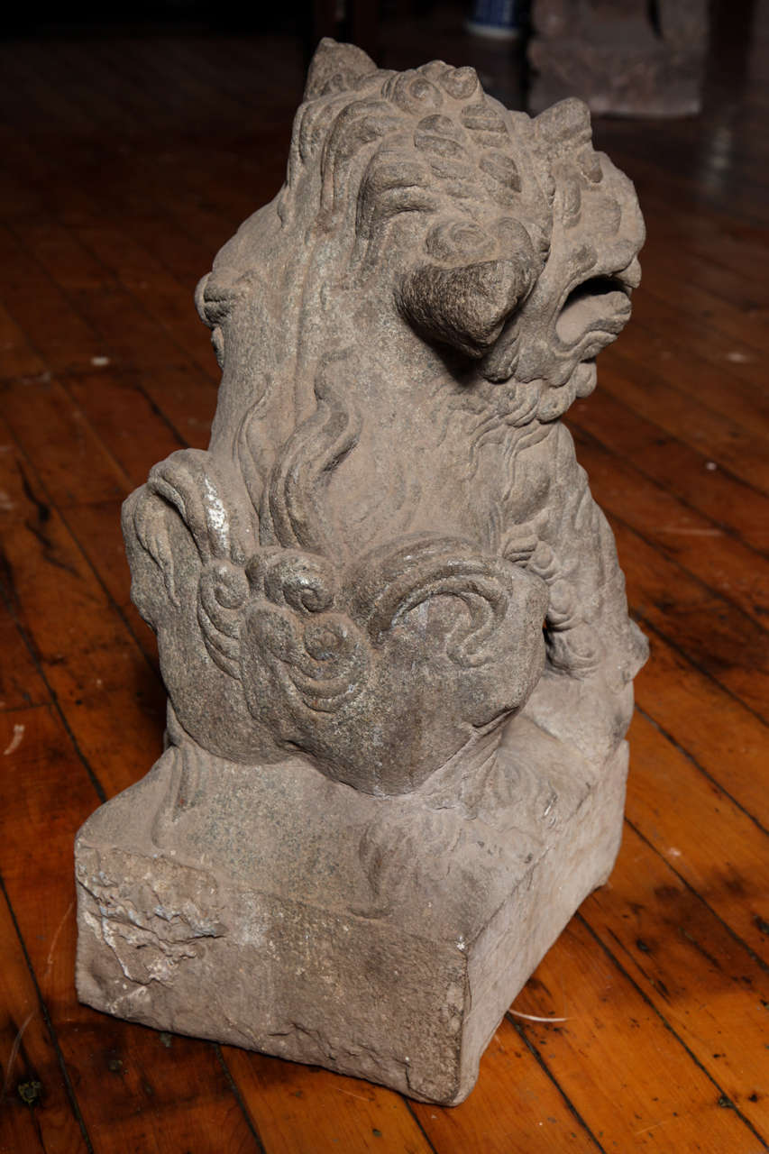 18th Century and Earlier Chinese Pair of Stone Guardian Foo Dogs/Guardian Lions from 18th Century For Sale