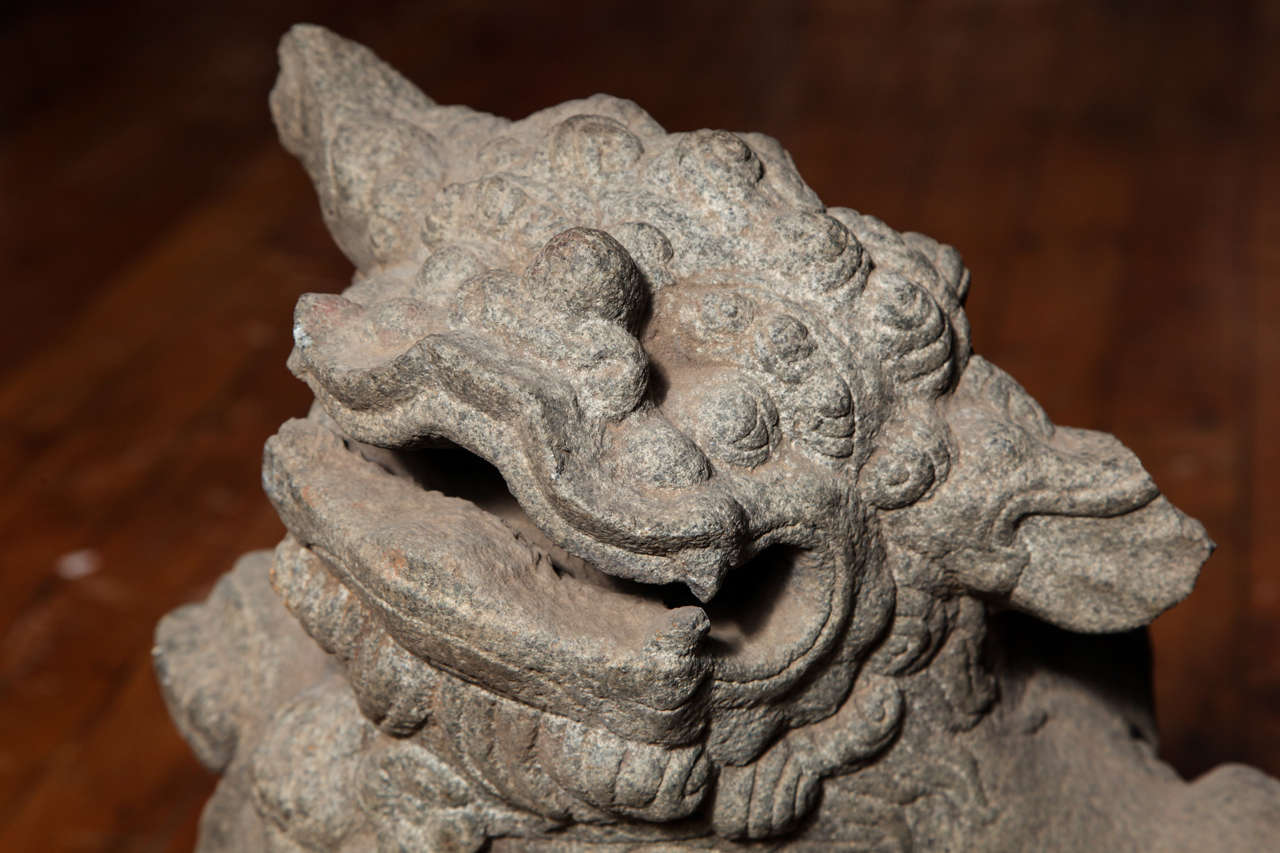 Chinese Pair of Stone Guardian Foo Dogs/Guardian Lions from 18th Century For Sale 4