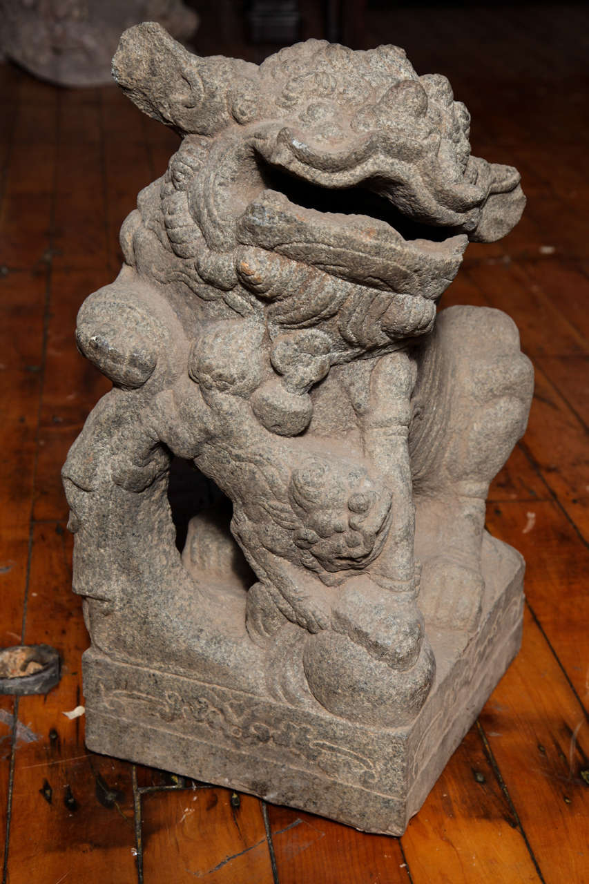 Chinese Pair of Stone Guardian Foo Dogs/Guardian Lions from 18th Century For Sale 5