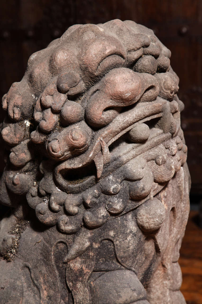 Late Ming Dynasty Antique Stone Lions from China, circa 16th-17th Century For Sale 2