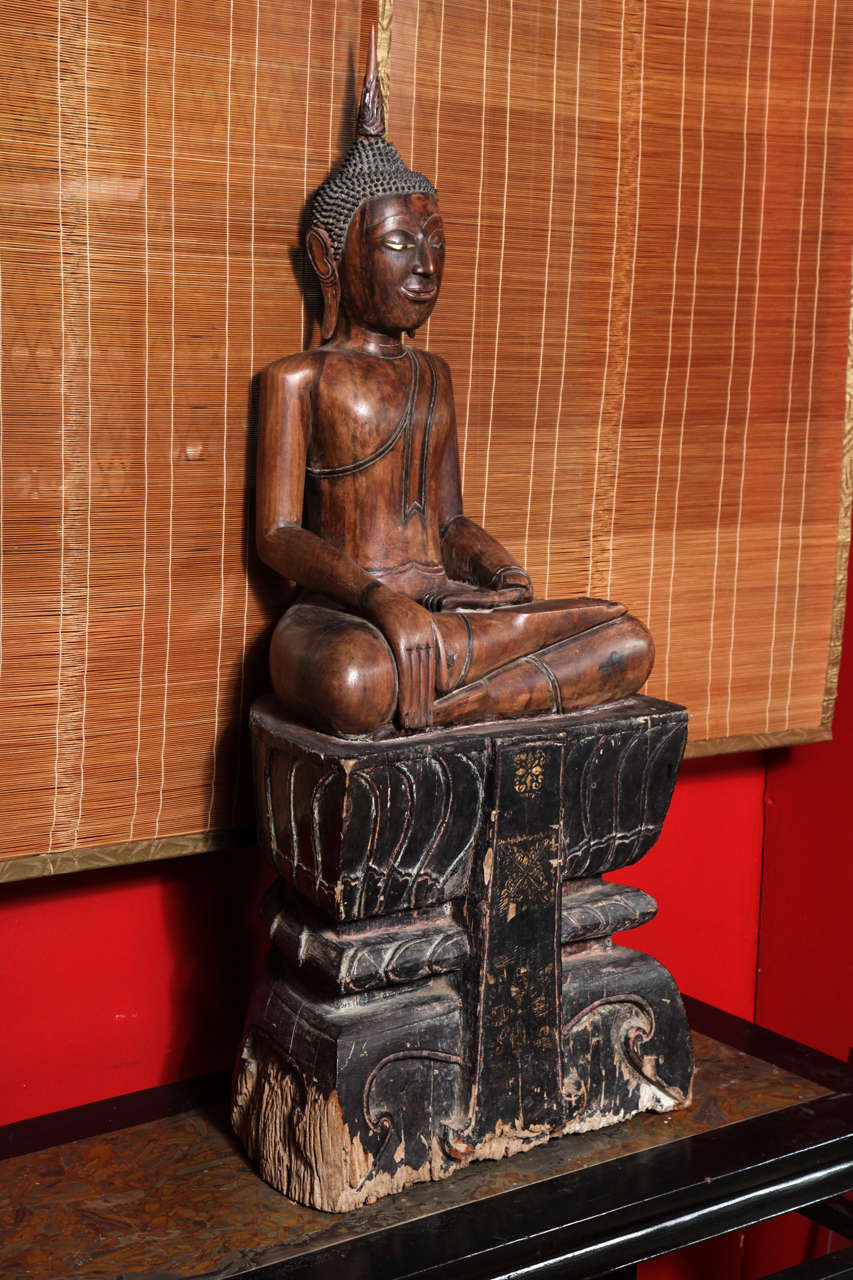 This 17th-18th century Thai seated Buddha was made with painted teak. The Buddha is seated on a high black Stand in the « calling the earth to witness » position. This scene occurs during the Buddha's enlightenment, when Sakyamuni calls the earth to