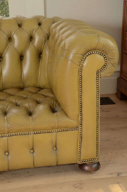 Chesterfield sofa in chartreuse green leather 3