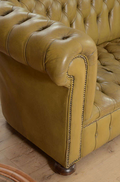 Chesterfield sofa in chartreuse green leather 6