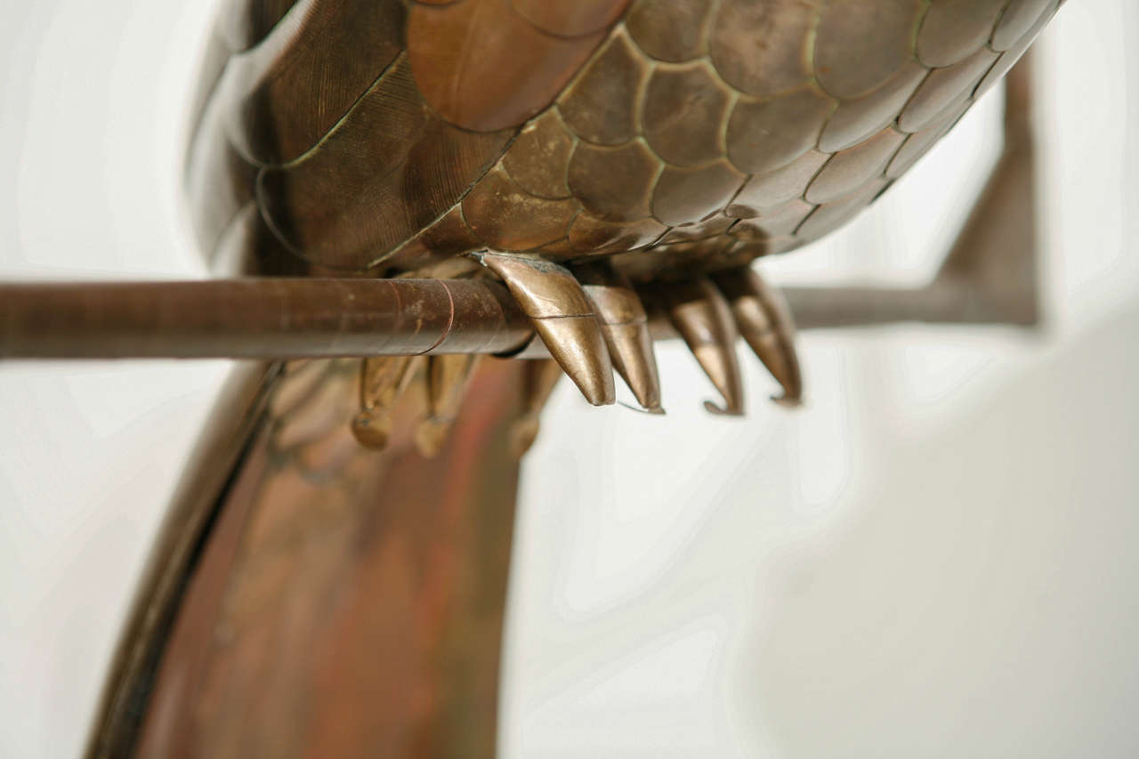 Copper and Brass Parrot by Sergio Bustamante 10